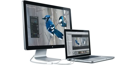 Apple LED Cinema Display de 24""