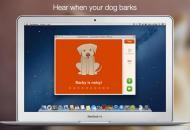 Dog Monitor te ayuda a controlar a tu mascota cuando no estás en tu hogar